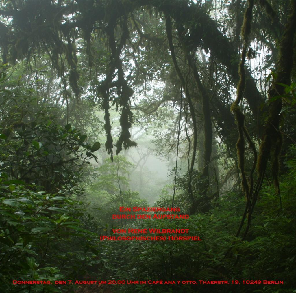 Dschungel-Text